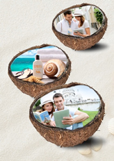creative coconut shell template