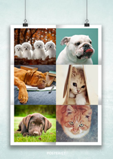 creative photo collage template