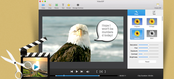 VideoGIF for Mac screenshot