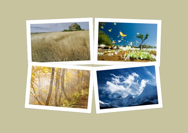 photo layout templates