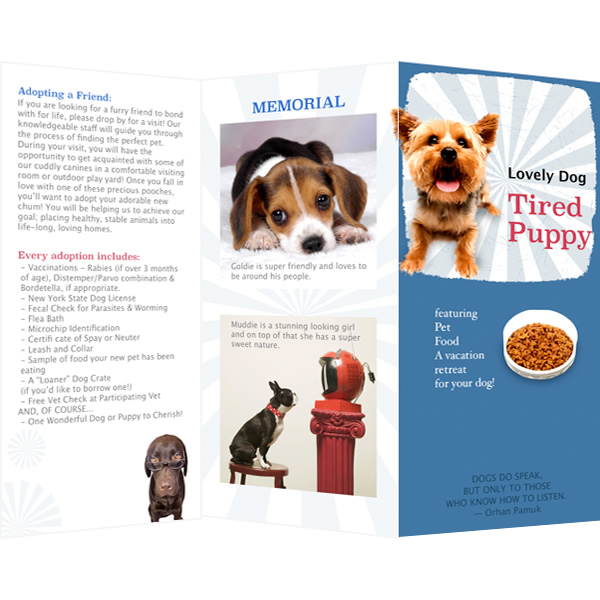 Brochure templates samples brochure maker publisher plus for Puppy for sale flyer templates