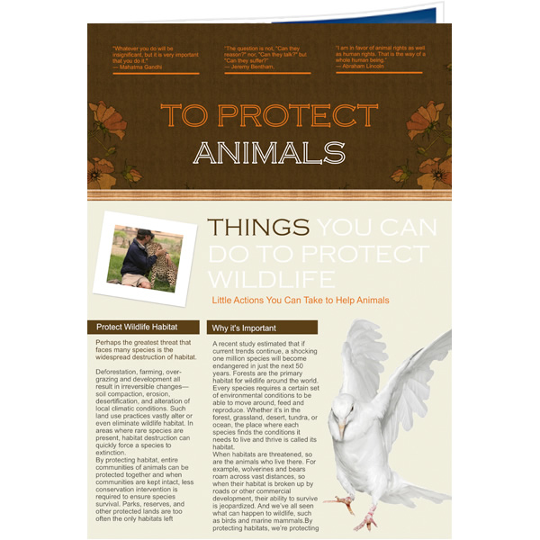 Newsletter templates samples newsletter publishing software newsletter ideas for animal protection spiritdancerdesigns Choice Image