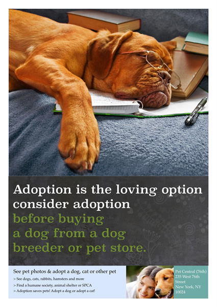 Poster templates samples poster maker publisher plus printable poster for dog adoption pronofoot35fo Images
