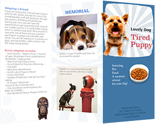 lovely pet dog adoption brochure template