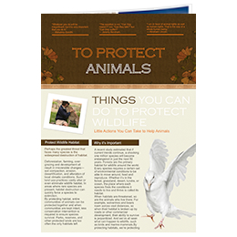 newsletter ideas for animal protection