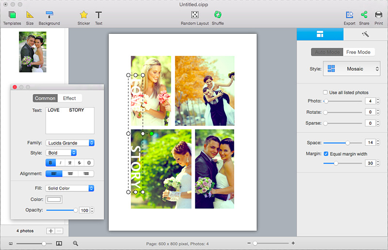CollageIt for Mac is an easy-to-use and automatic collage maker.