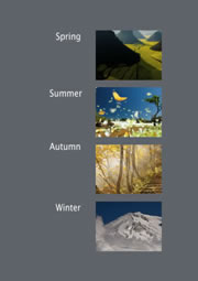 beautiful photo collage for seasons